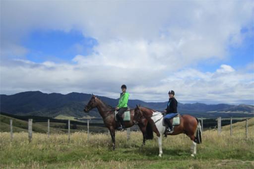 Poronui horseriding
