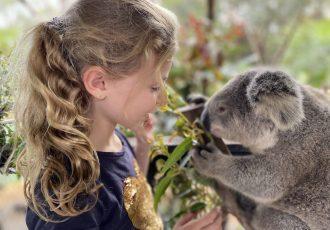 Sky with koala